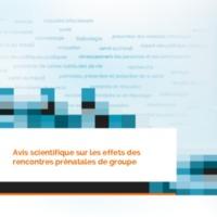 INSPQ_effets_rencontres_prenatales_groupe_FR_2015.pdf
