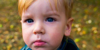 Des « laits pour bambins » qui suscitent des inquiétudes